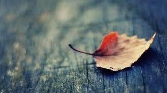 Güzel bir hayat için ölümle barışın