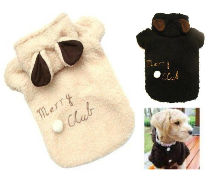 Bu köpek kıyafetlerinden hangisi, ''Senin köpeğin tam bir star!'' dedirtir?
