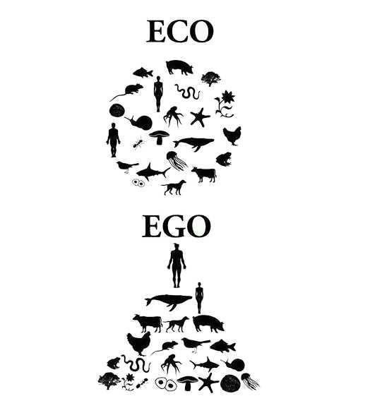 Ne olur yani egolu olmasanız?
