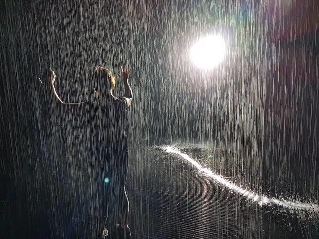 habit of rainy nights press - 640×480