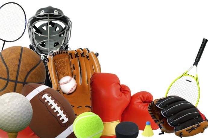Hangi branşta profesyonel sporcu olmayı isterdiniz?