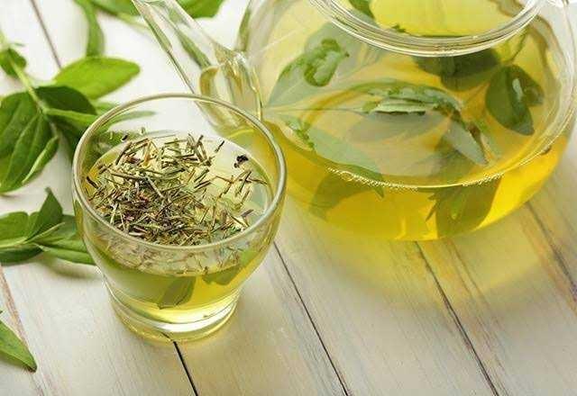 Yeşil çay sever misiniz?🌲?