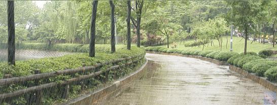 Siteden kiminle yağmur altında ıslanmak isterdiniz?