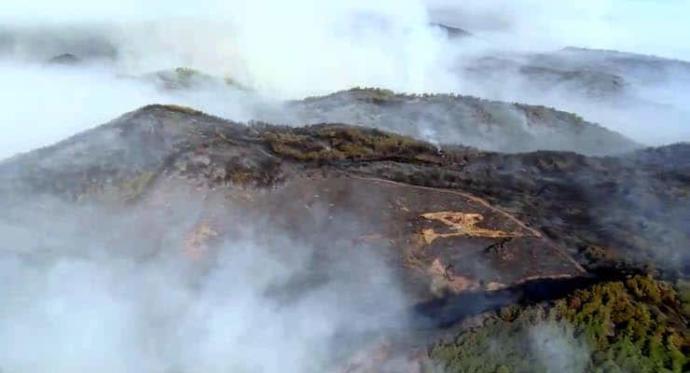 2009 yılından bugüne 83 bin 557 futbol sahası büyüklüğünde orman yandı! Toplum mu bilinçsiz yoksa yeteri kadar önlem alınmıyor mu?
