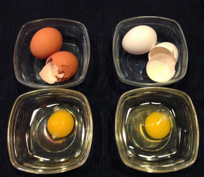 Yumurta alırken beyazı mı yoksa kahverengiyi mi tercih ediyorsunuz, neden?
