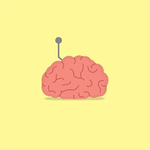 Neuralink projesi size uygulansaydı beyninize ilk önce hangi konudaki bilgiyi eklemek isterdiniz?