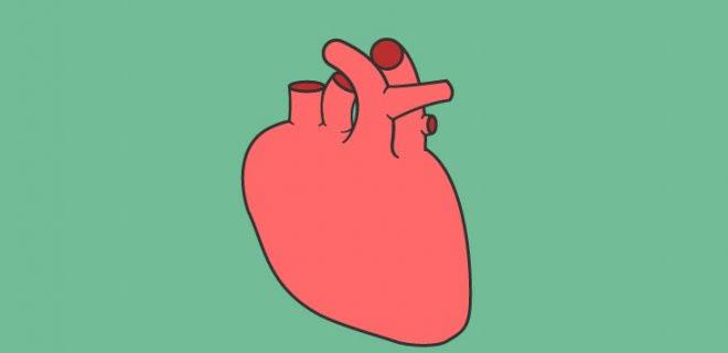 Kalbinizi bir eşyaya benzetecek olsanız neye benzetirsiniz?
