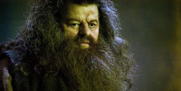 Burcuna Göre Hangi Harry Potter Karakterisin?