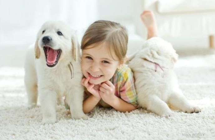 Küçük yaşta hayvan sevgisinin çocuklara aşılanmasının karaktere faydası nedir?