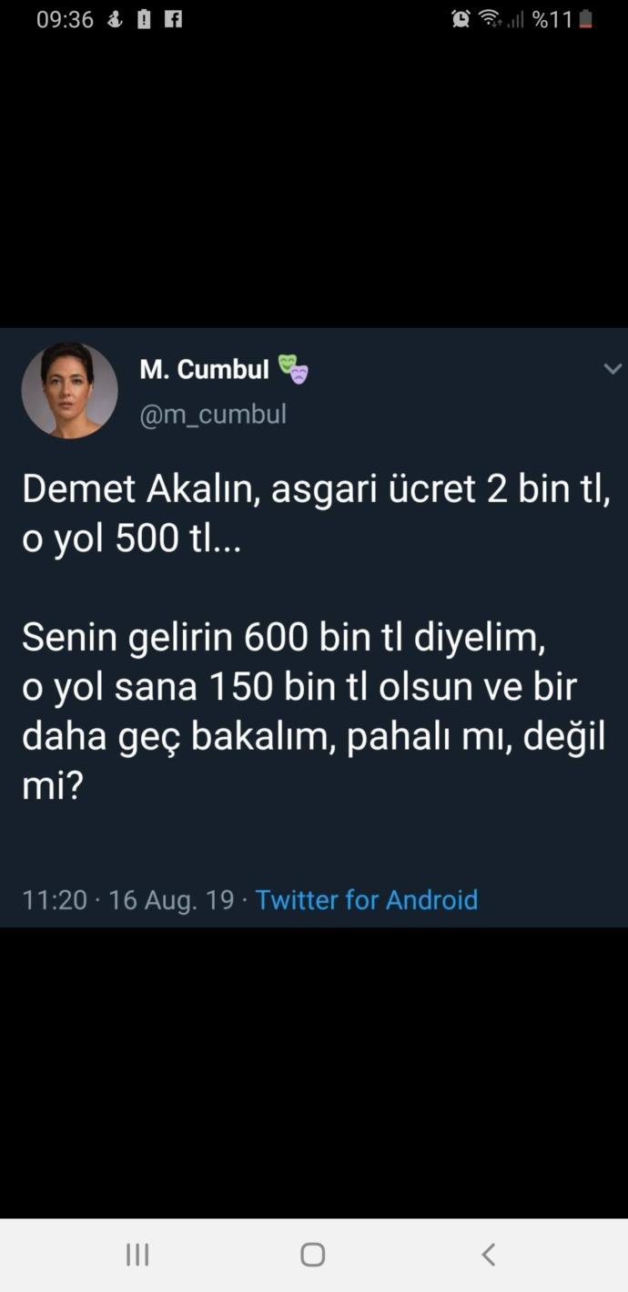 Alni opulecek kadınsın bee, erdoğan demet akalina teşekkür telefonu etmesi ardından meltem olayı demet'in anlicagi düzeye indirdi?