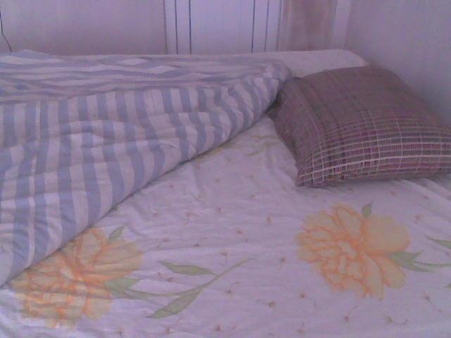 Yatak koçu nereden bulabilirim?