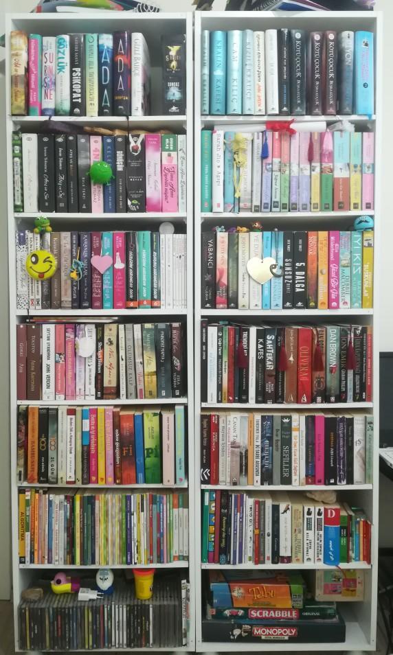 Kendinize ait kitaplığınız var mı? Kaç kitabınız var?