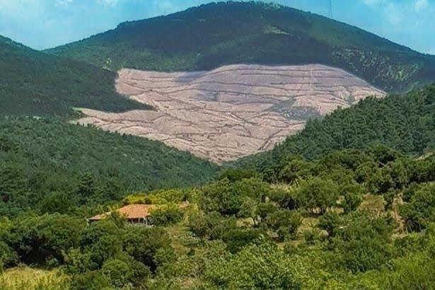 Haberlerde sosyal medyada hiç Kaz Dağları haberi yok dikkat ettiniz mi?