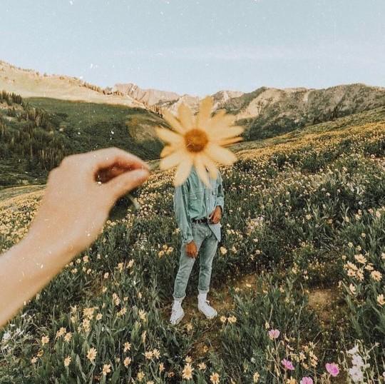 Hiç çiçekleri dalından kopardın mı?
