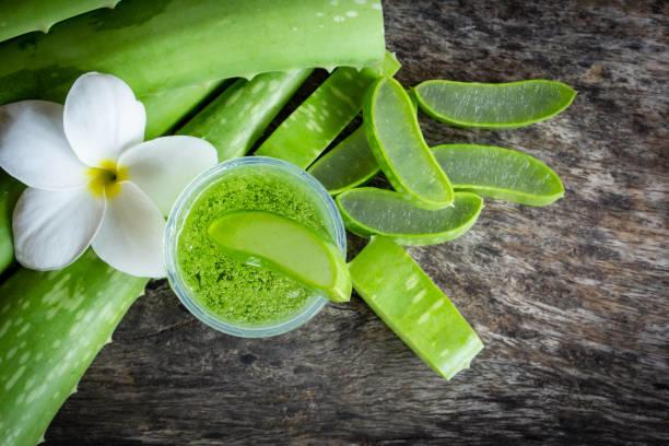 Aloe vera bitkisi nasıl kullanılır