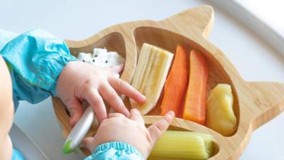 Vegan Beslenmek Cocuklar Icin Faydali Mi Zararli Mi Kizlarsoruyor