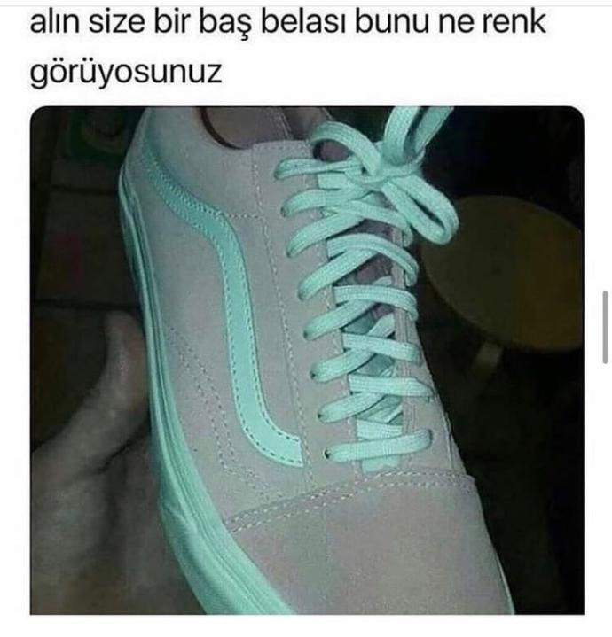 Resimdeki ayakkabının rengi nedir?