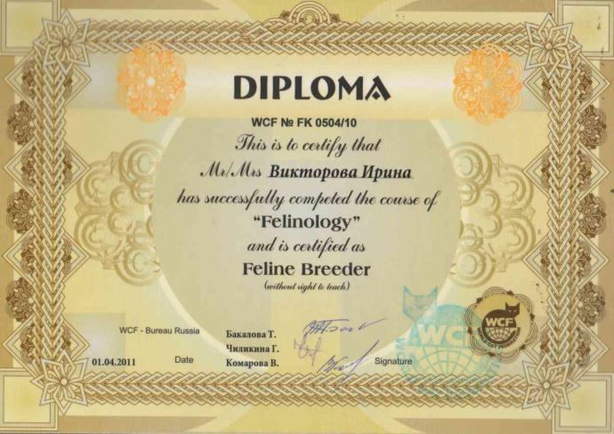 Diploma sahibi olmak eğitimli olmak için yeterli mi?