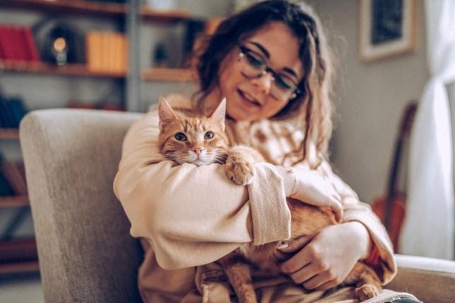 Kedilerin en sevilesi özelliklerinden favoriniz hangisi?