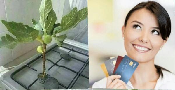 Eşinize alışveriş yapması için kredi kartınızı teslim edebilir misiniz?