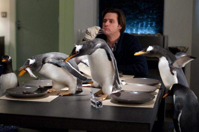 Babamın penguenleri filminden bir kesit.