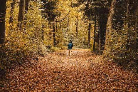 Yürüyüş yapmak İstediğinizde tercihiniz hangi rota oluyor?