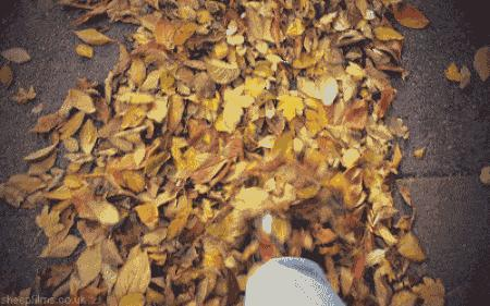 Sonbaharda senin modun hangisi?