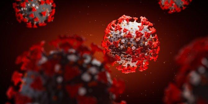Covid-19 0 RH kan grubunu es geçiyormuş, araştırma sonucuna göre siz ne düşünüyorsunuz?
