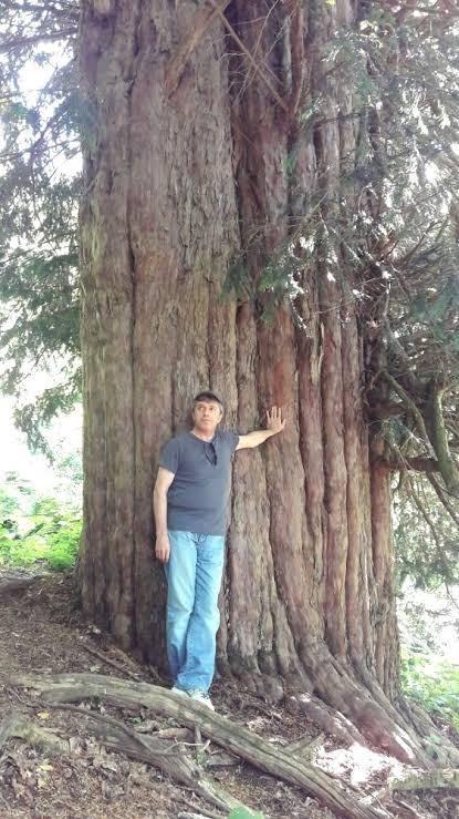 Türkiyenin en yaşlı ağacı 4115 yaşında ! Bronz çağında filizlenmiş. Siz hiç ağaç diktiniz mi?