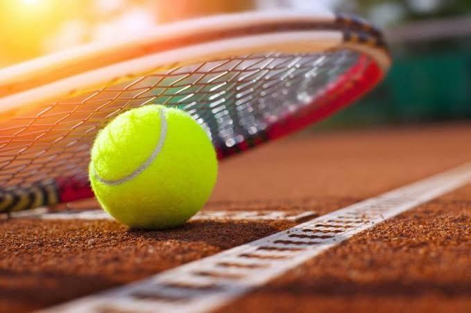 Favori spor dalınız nedir?