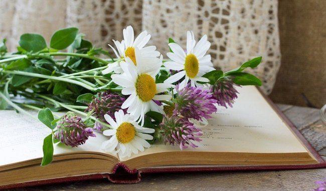 hediye verilecek kitabın ilk sayfası için notlar
