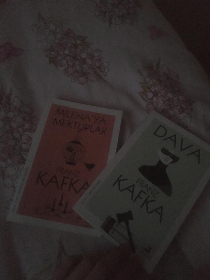 Franz kafkanın bu iki kitabından hangisine başlayayım sizce?