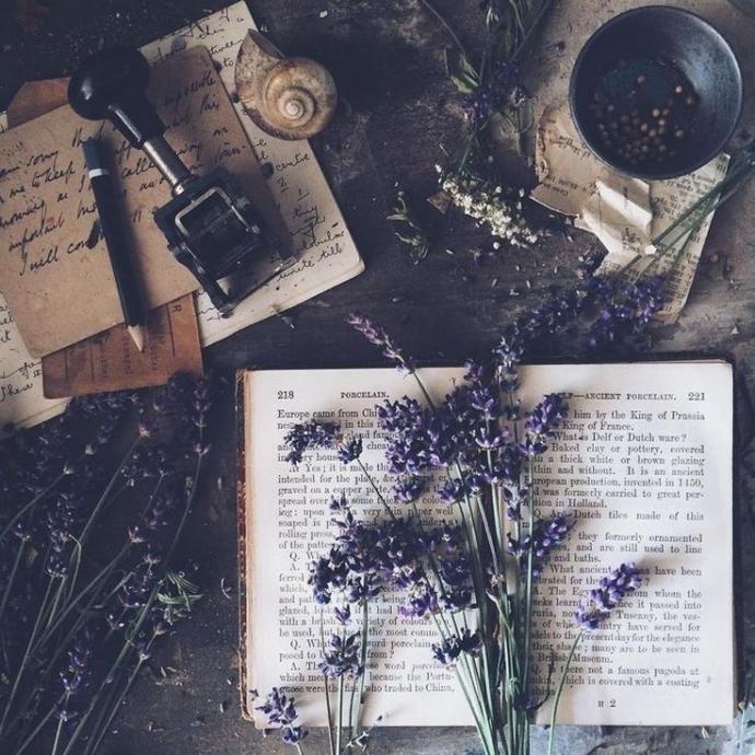 Hayatınız kitap olsa kaç sayfa olurdu?