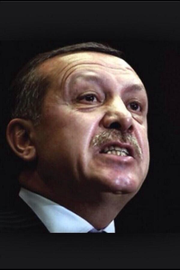 Tayyip Erdoğanın başarabileceğine inanıyor musunuz?