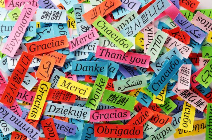 Hangi dilleri öğrenmek daha mantıklı?