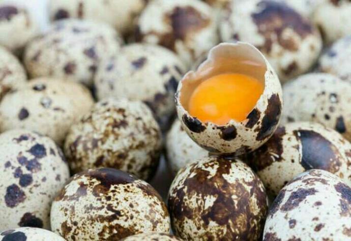 Bıldırcın yumurtası içtiniz mi hiç?
