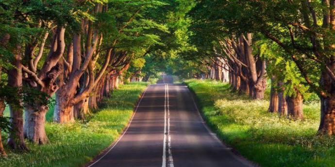 En çok hangi yolculuğu tercih edersiniz?