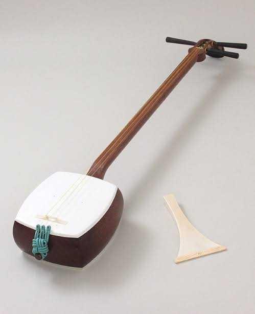 Hangi enstrümanı çalabiliyorsunuz ya da çalmak isterdiniz?