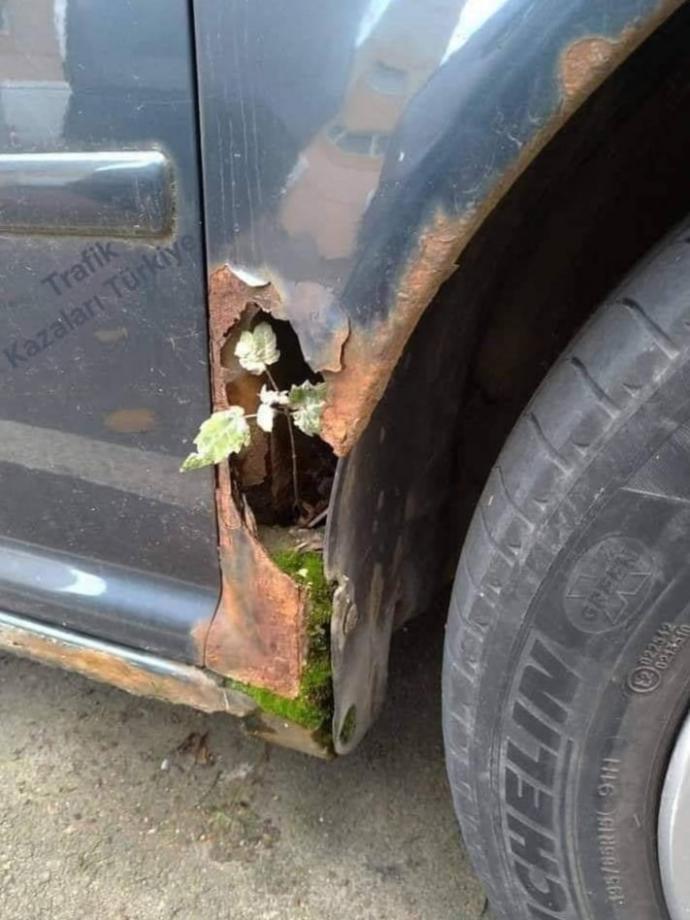Size Çiçek gibi araba dedirten araba hangisi?