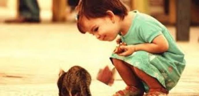 Merhamet size göre nedir?