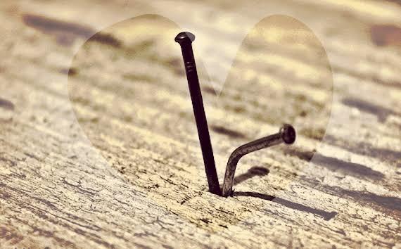 Civi çiviyi söker mi 😂😂 bu olay gerçek mi çivi nasıl bir çiviyi söksün ki kafamda deli sorular nasıl oluyor bu iş?