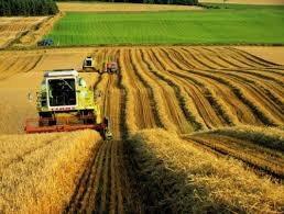 Bugün 14 Mayıs Dünya Çiftciler Günü. Üretip karşılığını alamayan çiftçiler ve ülke tarımı için neler düşünüyorsunuz?