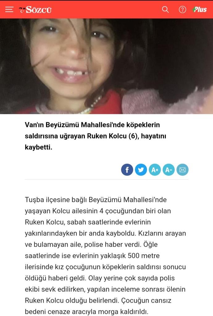 Köpeklerin saldırdığı 6 yaşındaki Ruken öldü. Bu çocuğun ölümünün gerçek sorumlusu kim?
