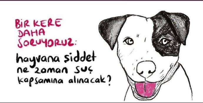 Hayvan hakları yasasının bir türlü çıkmaması hakkında ne düşünüyorsunuz?