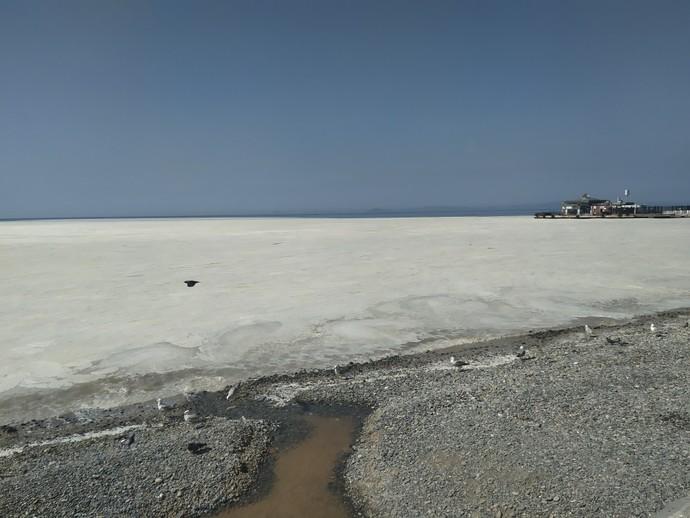 Marmara denizinin sonu mu geldi?
