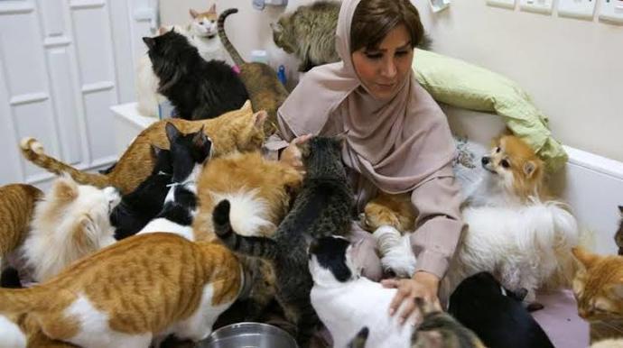 Hayvanlara eziyet edene dört yıl hapis cezası verilecek. Bu sence yeterli mi?