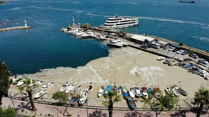 Marmara denizi tertemiz nasıl olur?