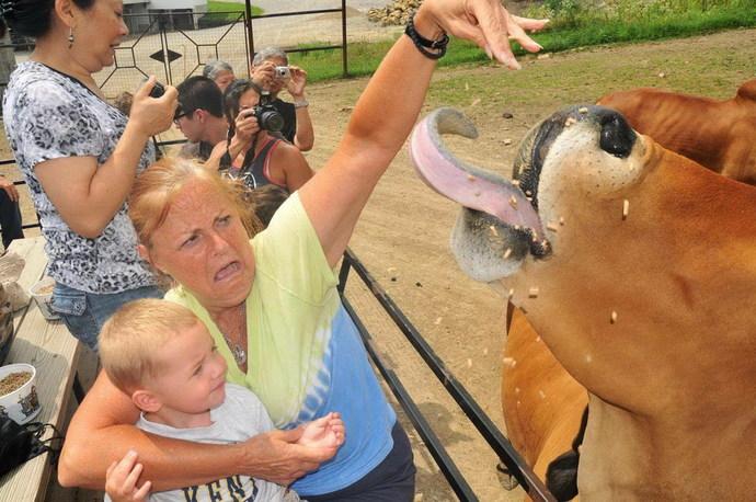 Hiç hayvanat bahçesi gezisi yaptınız mı?