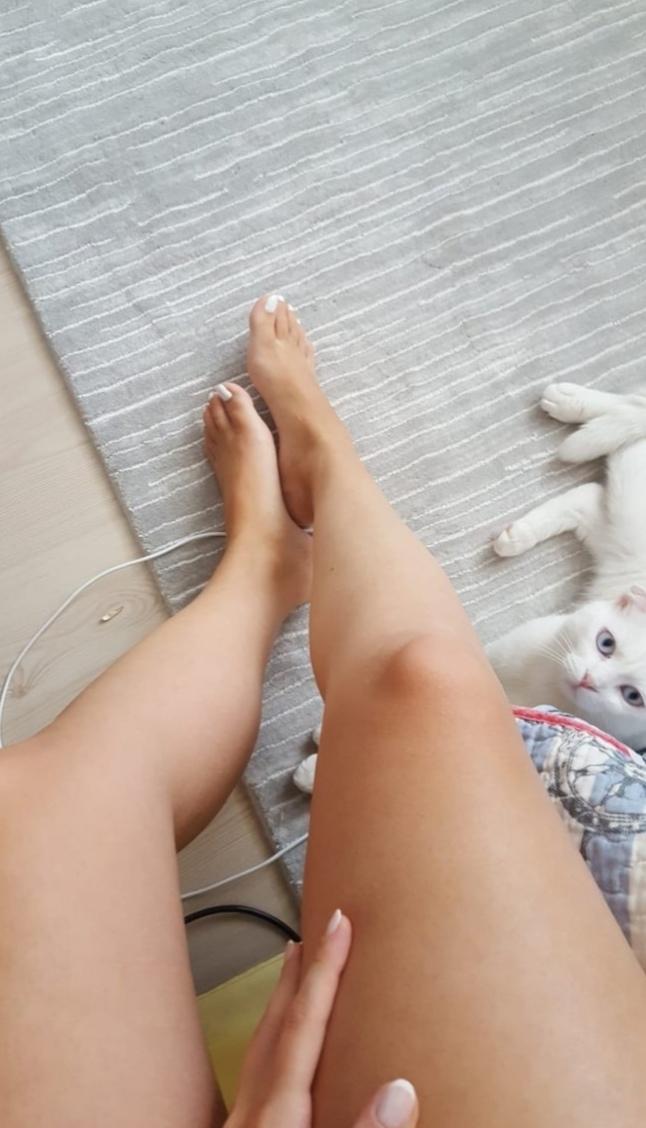 Arkadaşlar sizce kedim nasıl beni soracak olursanız bende yalnızım mizgin nasıl sizce?