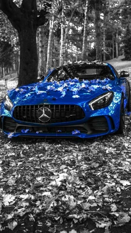 Parlement mavisi arabalar çok klas değil mi?